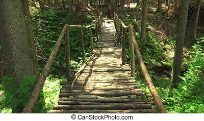 Wooden bridge over the cliff in the forest Shot in 4K...