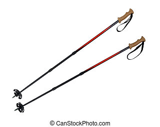 Ski and Hiking Poles - Ski and hiking poles with large snow...