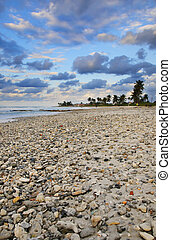 Tropical beach scene at sunset, cuba - A view of tropical...