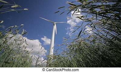Wind Generators Turbines on Wheat Field HD