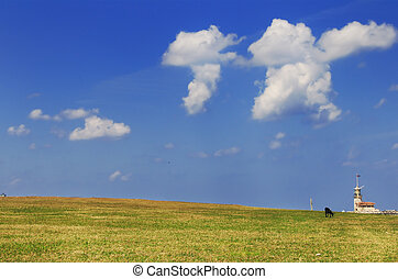 Grass and sky with black lamb