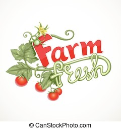 Farm fresh lettering with tomato sprout with flower isolated...