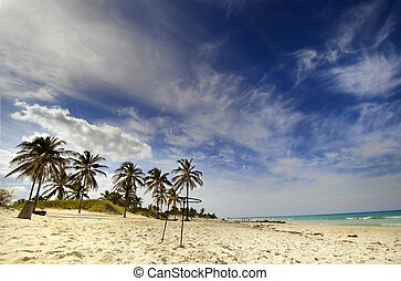 Cuban beach - Santa Maria del Mar - View of tropical beach...
