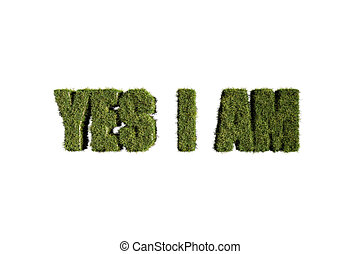 word made with grass isolated on white background
