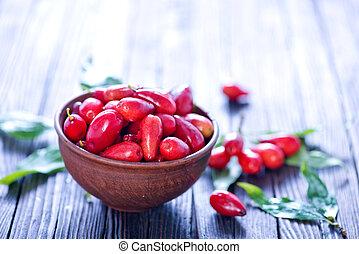 berries - red berries of cornus on a table