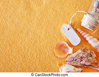 shells and sand - sea shells and stones on the yellow sand