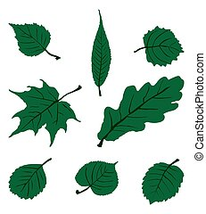 Leaf Set. Vector EPS 10.