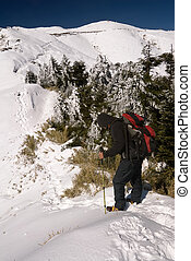 Mountain climber on snow peak with backpack and trekking...