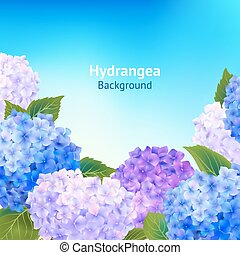 Hydrangea Flowers Background - Flowers background with...