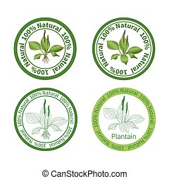 Plantain labels
