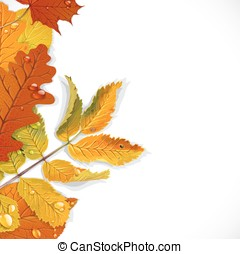 Realistic red, yellow and green autumn leaves vertical composition on a white background with space for text