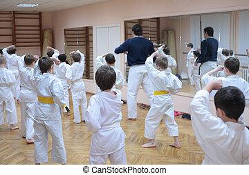 karate, niños, entrenamiento, deporte,...