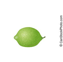 Photo Realistic Lime Isolated - Illustration Photo Realistic...