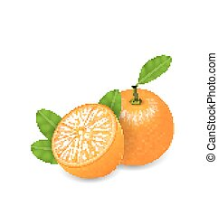 Photo Realistic Set Orange Fruits - Illustration Photo...