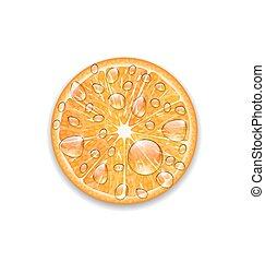 Photo Realistic Slice of Orange - Illustration Photo...