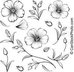 flores, Conjunto,  sakura, Colección