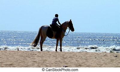boy on a horse on a sandy beach near the ocean looking into...