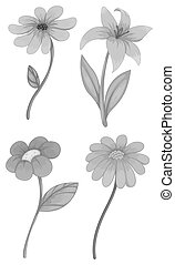 Four different kind of flowers illustration