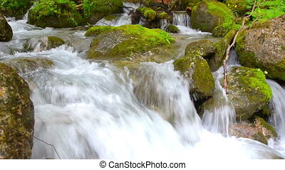 Mountain Creek - Mountain creek flowing between rocks making...