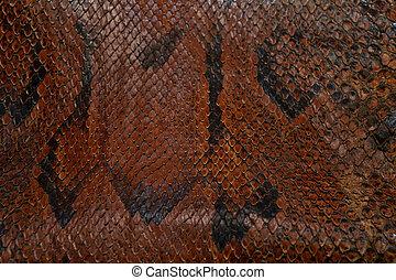 skin snake pattern