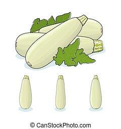 Zucchini Courgette Vegetable - Zucchini Courgette , Three...