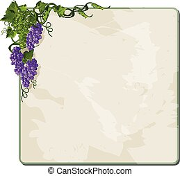 Grapes on vine. - Grapes on vine with frame. Eps10. Vector.