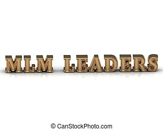 MLM LEADERS - bright gold letters on a white background