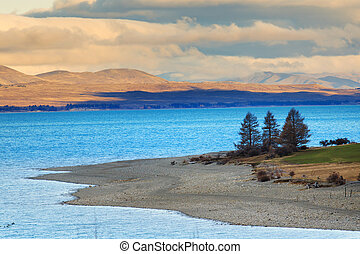 beautiful pine and mountain land scape of pukaki lake along...