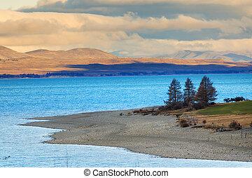 beautiful pine and mountain land scape of pukaki lake along...