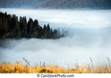 Autumn landscape - Beautiful autumn landscape in mountains...