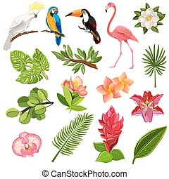 Tropical birds and plants pictograms set