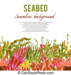 Coral Seabed Background - Seabed background with corals and...