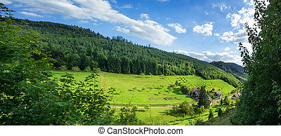 Panoramic view of the black forest in Baden-Baden Germany...