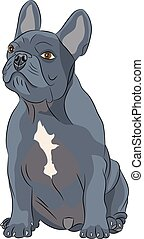 Vector french bulldog - French Bulldog dog breed, black,...