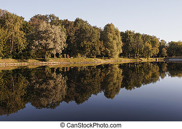 Reflection of trees in the lake in
