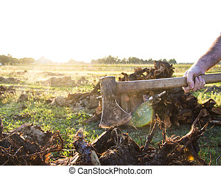 Woodcutter - woodcutter at work with his strong axe