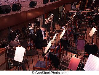 音樂家, 管弦樂隊