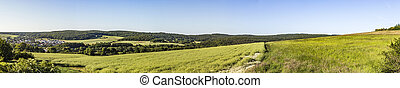 rural landscape with forest and green fields in Taunus area