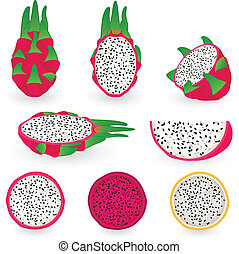Dragon fruit - Vector illustration of dragon fruit also...