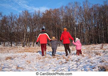 madeira, corrida, Inverno, família, costas