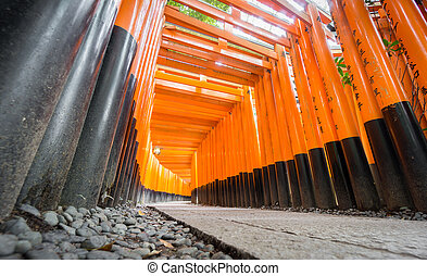 Worms eye view of Torii gates in Fushimi Inari Shrine - Wide...