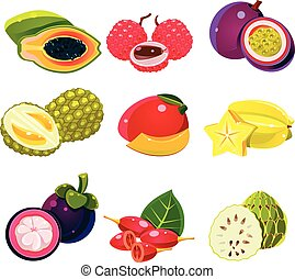 Colourful Exotic Tropical Fruits Set - Colourful set of...