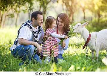 Happy family in nature - Happy young family spending time...