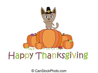 Happy Thanksgiving, the cat