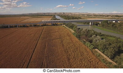 Fast train enters bridge near cultivated corn field and...