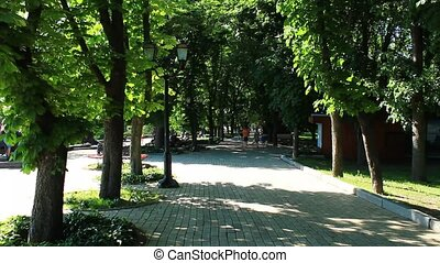 Beautiful park with many green trees - Beautiful city park...