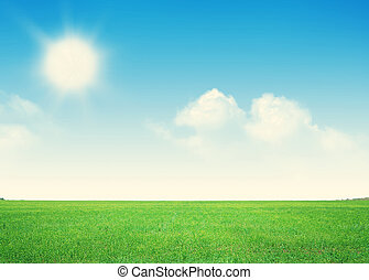 Endless green grass field and blue sky with clouds
