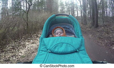 baby carriage forest - Curious newborn baby girl carriage...