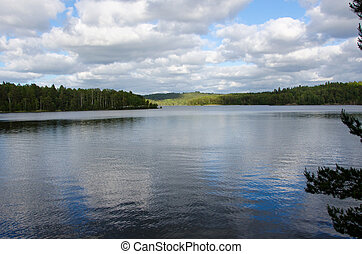 swedisk forrest - swedish lake with lot of forrest and...