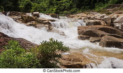 mountain stream flows among stones bush at foreground in...
